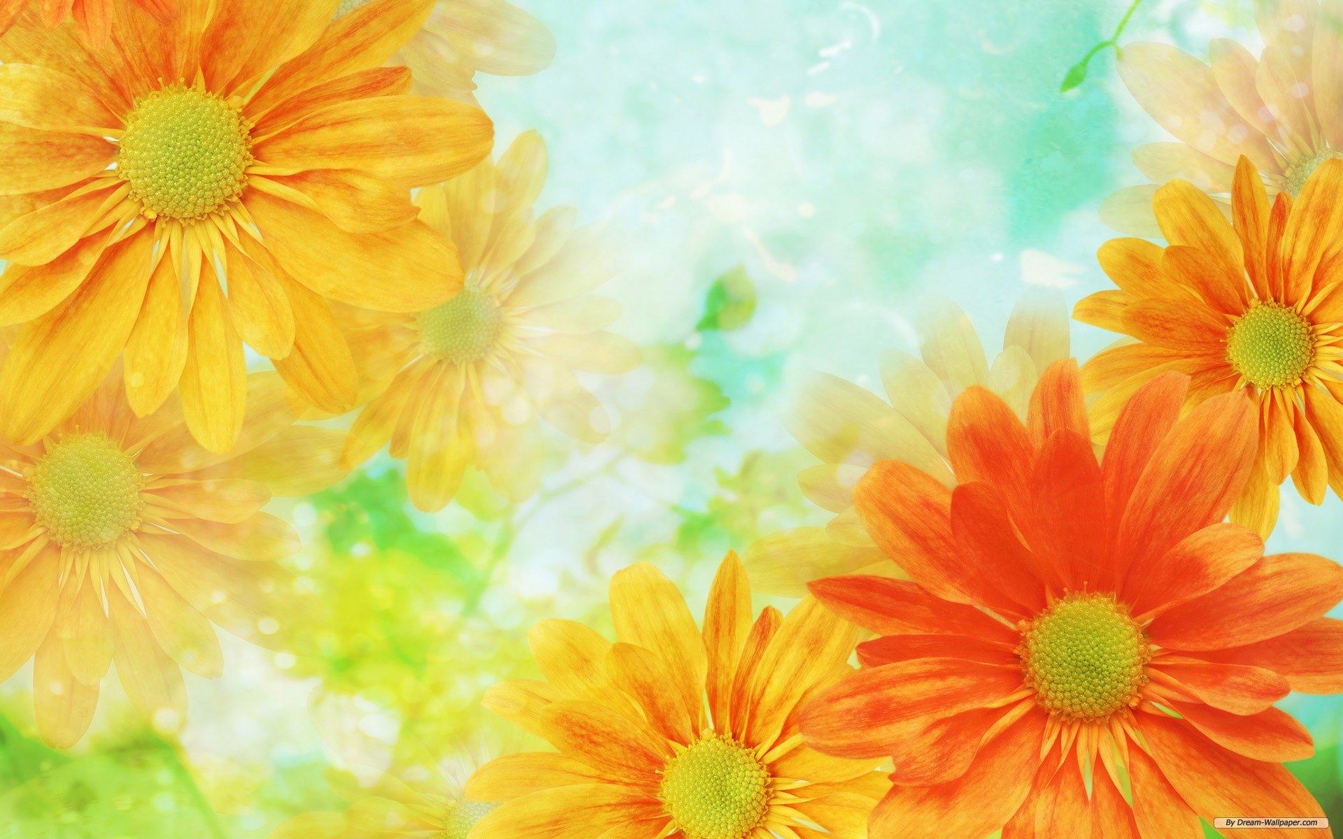 flowers-images-background-6